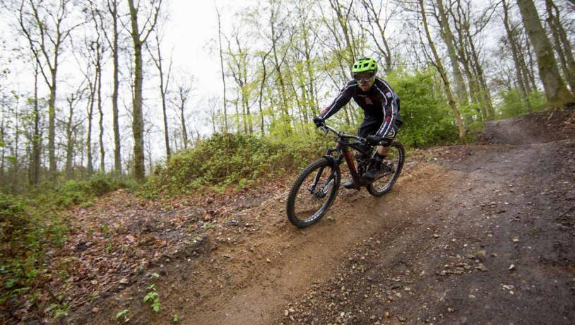 mountainbiker i skoven